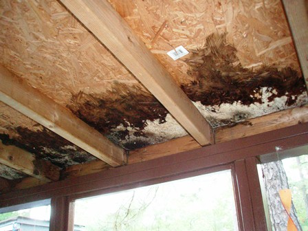 ...before picture of the damaged sheathing sheathing