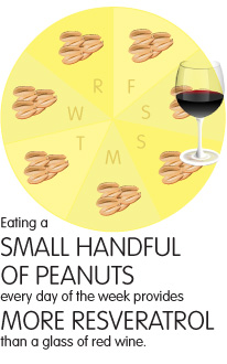 eating a small handful of peanuts every day of the week provides more resveratrol thana glass of red wine