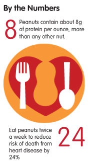 Peanuts contain about 8g of protein per ounce, more than any other nut