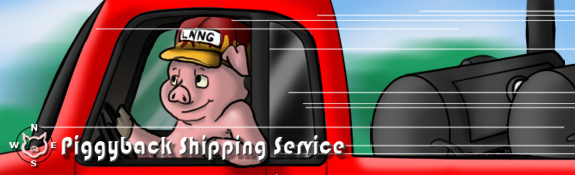 Piggyback shipping service