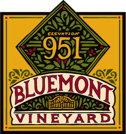 BV Diamond Logo