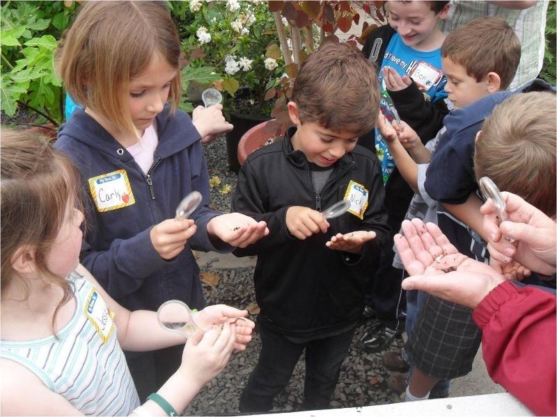 Learning Landscape kids in greenhouse