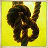 Bowline knot jpg