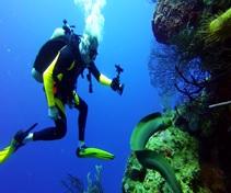 Mike Daust Scuba Diving