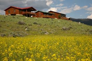 Overlook Cabins
