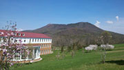 Tinker Mountain in spring