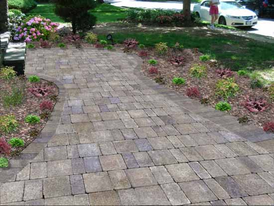 Paver Walkway - After Image 1a Starter Plants