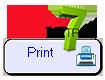 Metron 7 Print button