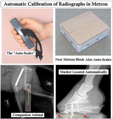 Radiograph Calibration