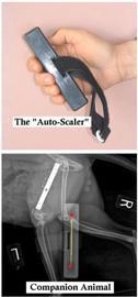 Auto Scaler Combo