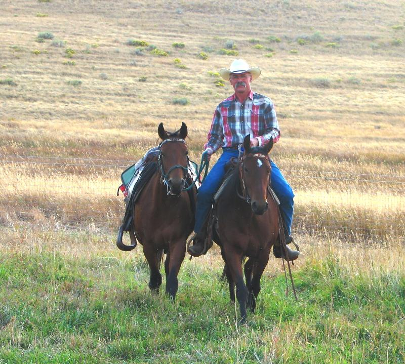 Wyoming Equine-Dr Connally