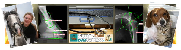 Metron News Welcome