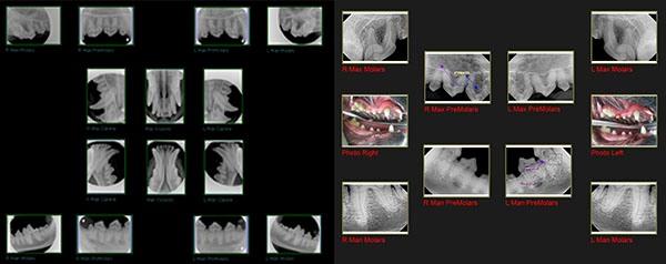 Dental Forms 2012