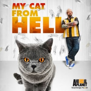 My Cat From Hell on Animal Planet