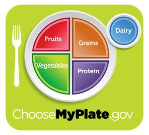 Food Plate - wellness