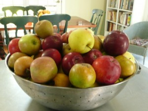 apples in bowl, Amy Cotler