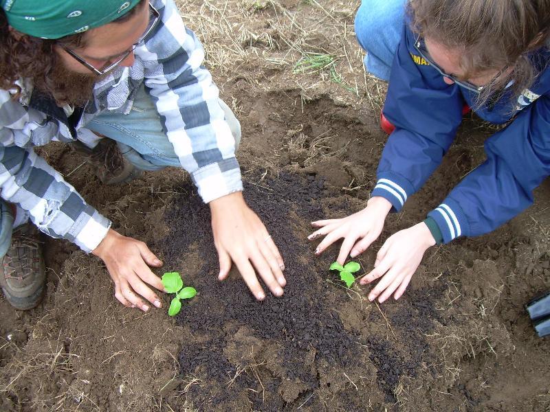 Comm Coop Farm hands