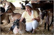 Rawson Brook Farm nytimes