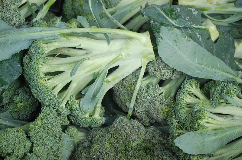 Broccoli Chris Blair