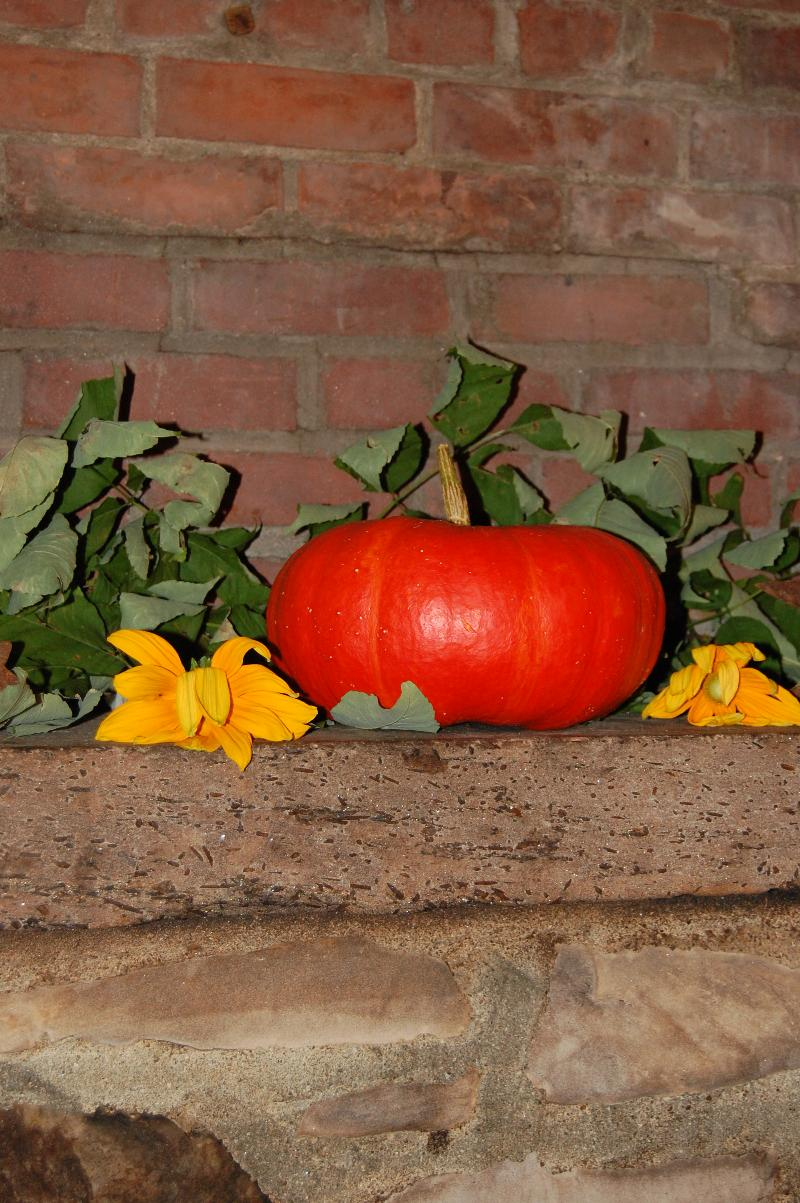 pumplin bricks, harvest supper decoration