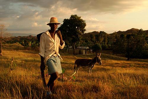 Haitian farmer