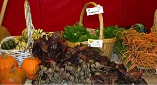 veggies against red
