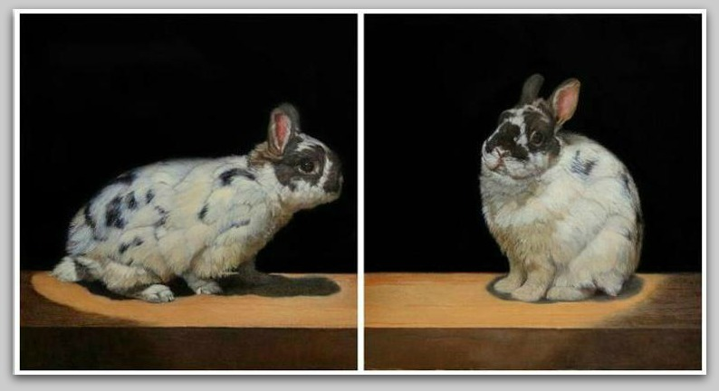 traub_bunnies