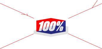 100 PERCENT GOGGLES