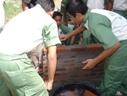 Student Practical - Masonry