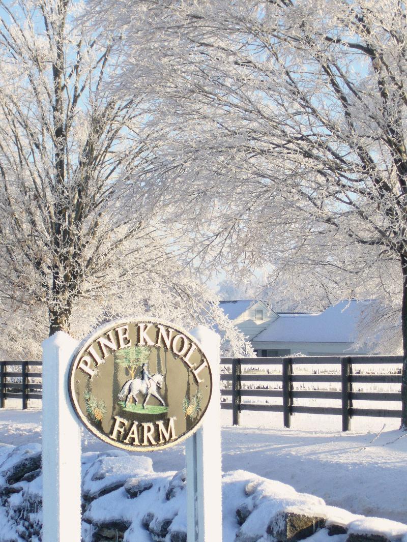 PKF Sign in Snow