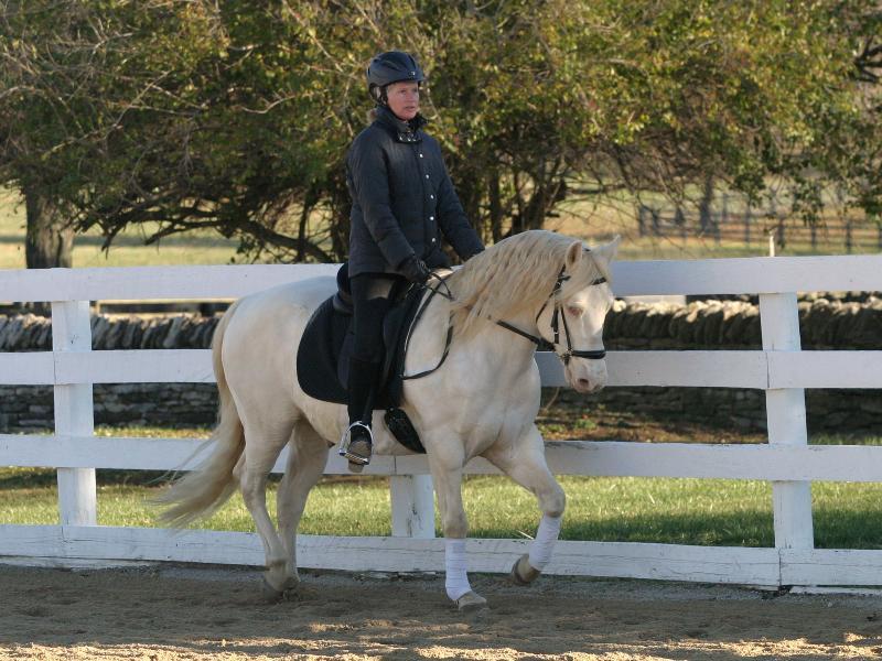 OK & Sue during Tom Clinic Nov'12