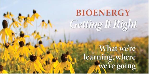 Grow bioenergy cover