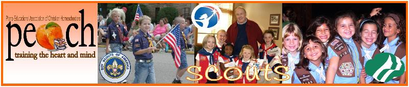 Scouts_Banner