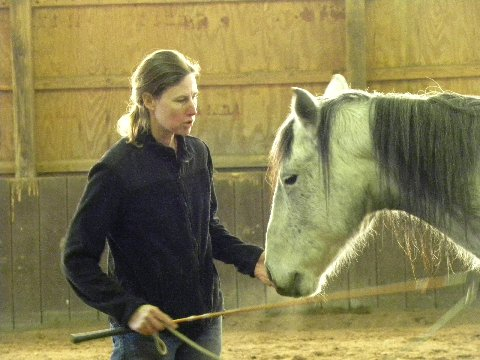 Stephanie demonstrating with Morado