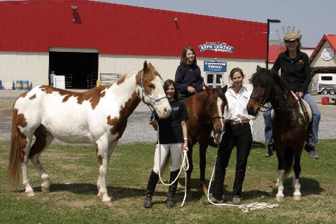 The crew at Everything Equine