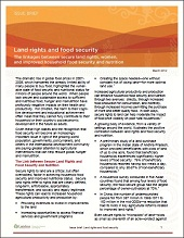 Issue brief on land rights and food security