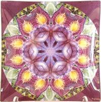 Kaleidoscopic Imagery