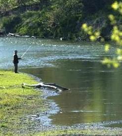 Turkey Rocks Angler