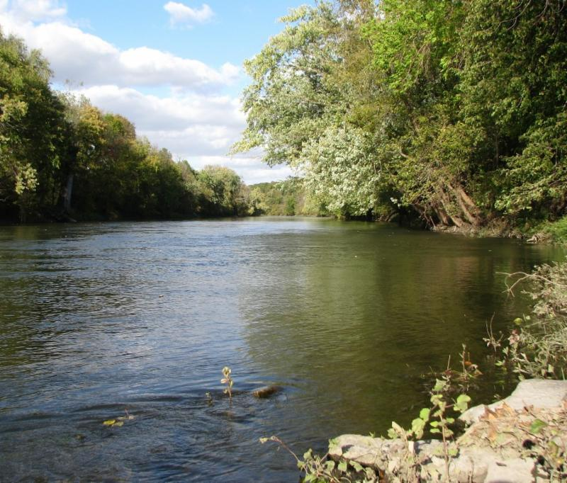 Briggs Woods Boone River WT