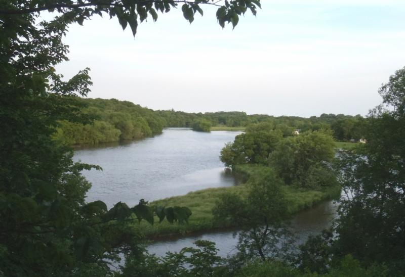 Cedar River Overlook