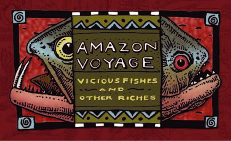 Logo Amazon Voyage