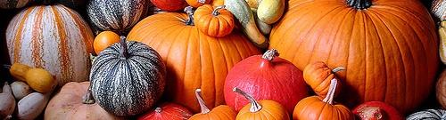 pumpkin banner 2