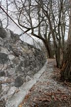 Arboretum walls