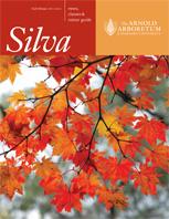 Silva Fall 2011