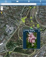 Arboretum GIS