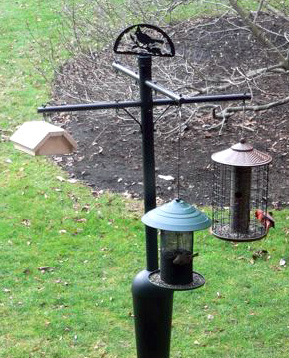 Visitor Center Bird Feeders