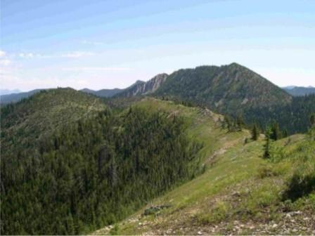 Whitefish Divide