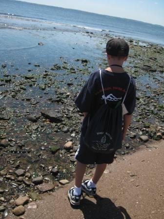 Beach tidal zone