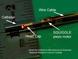 Probe for OCT incorporates a modified SQUIGGLE motor