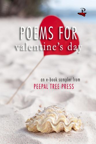 valentine e book cover